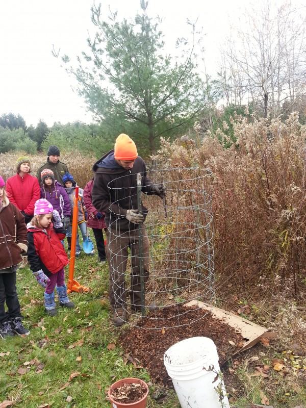 Akiva Silver leading Tree Planting at EVI Nov 2013