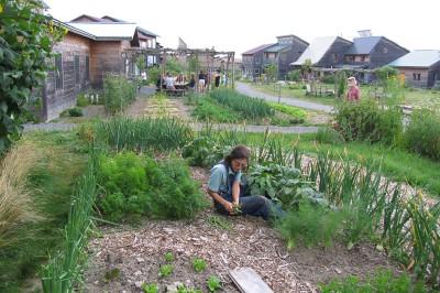 community front garden