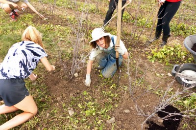 """Kestrel Perch hosts a field trip/work project for Groton High School's """"Food and Sustainability"""" class. Photo: Jim Bosjolie"""